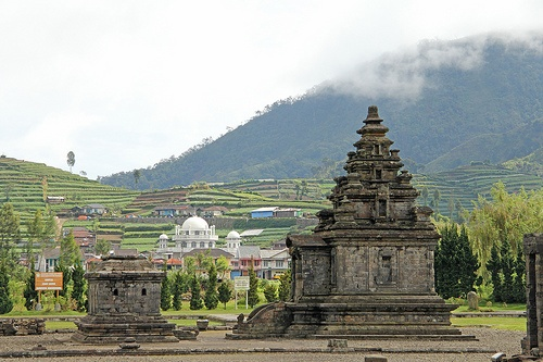 Komplek Candi Arjuna - Dieng (Java - Indonesia).The breathtaking temple complex on the Dieng Plateau at a hight of 2000 meters above sea level.
