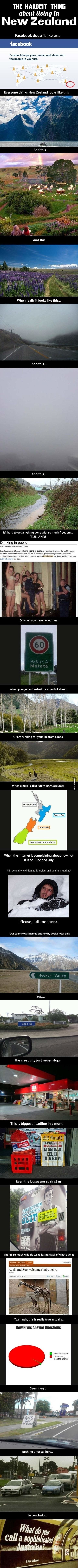 A look at New Zealand
