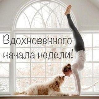 С началом новой недели!!!! Я желаю всем,чтобы эта неделя принесла побольше радости и успеха. Везения вам,друзья!!!!!!!! #везение #понедельник #понедельникденьтяжелый #радость #работа #радостьмоя #собака #собаки #собакадругчеловека #тренировка #тренировки #спорт #весна #стойканаруках #тренажерныйзал#мотивация#фитнес