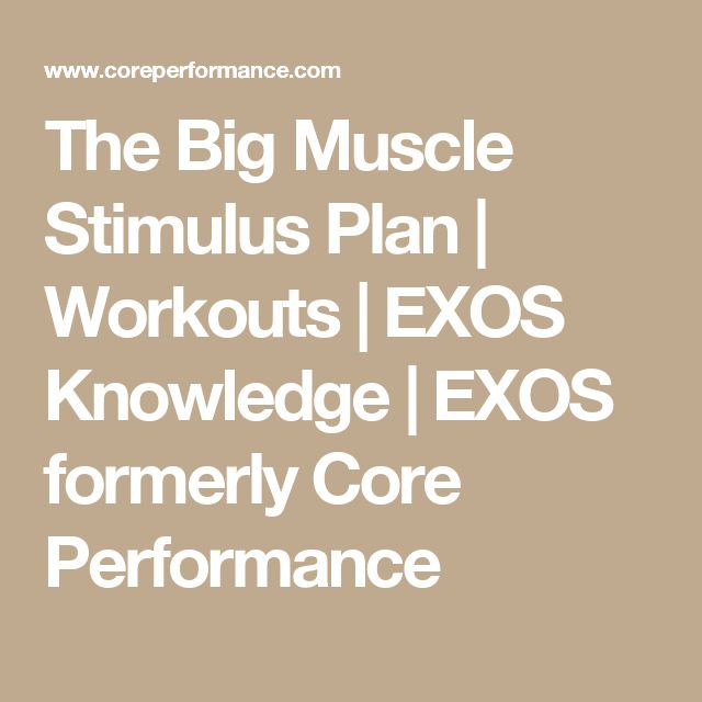 The Big Muscle Stimulus Plan | Workouts | EXOS Knowledge | EXOS formerly Core Performance
