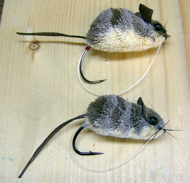 Mouse Fly Tying Challenge. Crazy cool! For more fly fishing info follow and subscribe www.theflyreelguide.com Also check out the original pinners/creators site and support