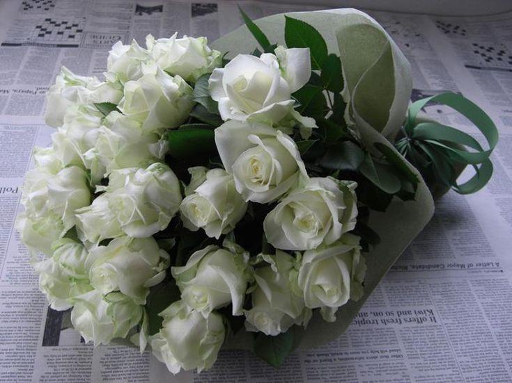 Мульт, белые розы открытки картинки