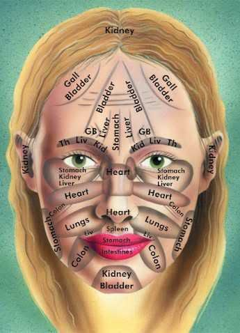 What your face .. is telling YOU about your health.: Health Problems, Skin Care, Faces Charts, The Faces, Faces Maps, Breaking Outs, Essential Oils, Facials, Chine Medicine