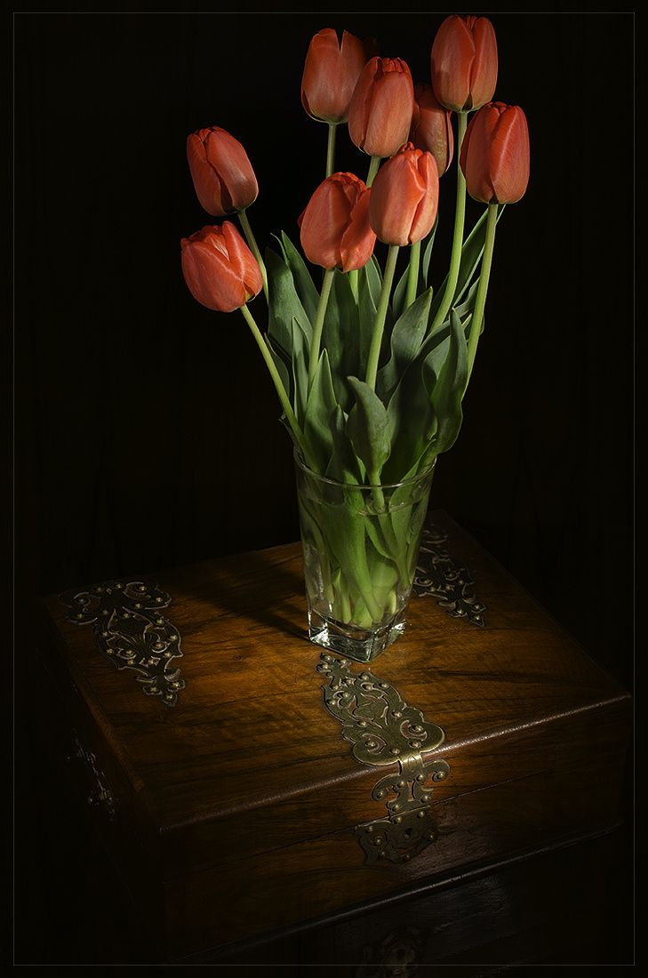 Flowers - null