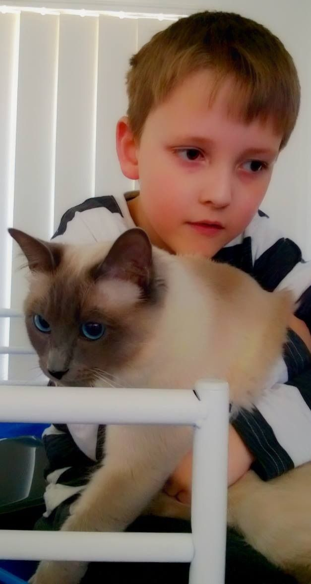 KingSimba with Noah. At one time he was as small as a bowl in his lap. Now he is growing up along side him.
