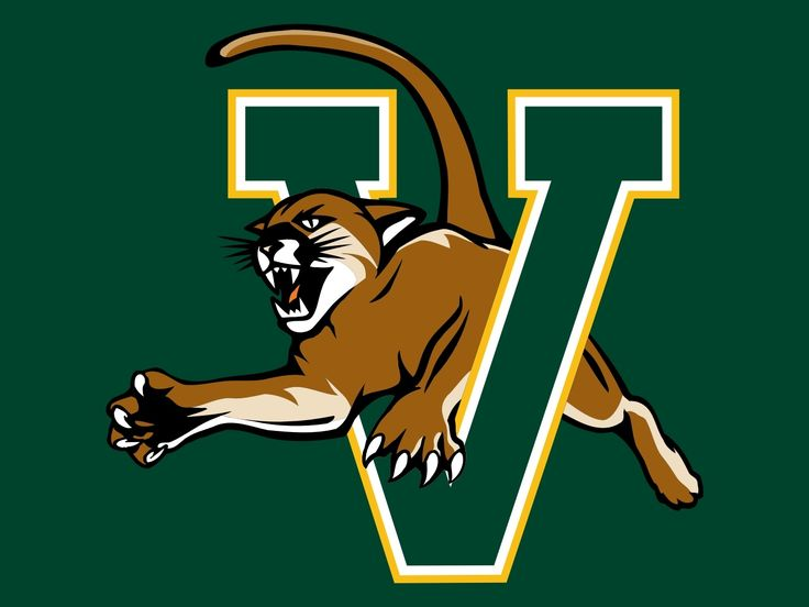 Image result for vermont catamounts logo colored background