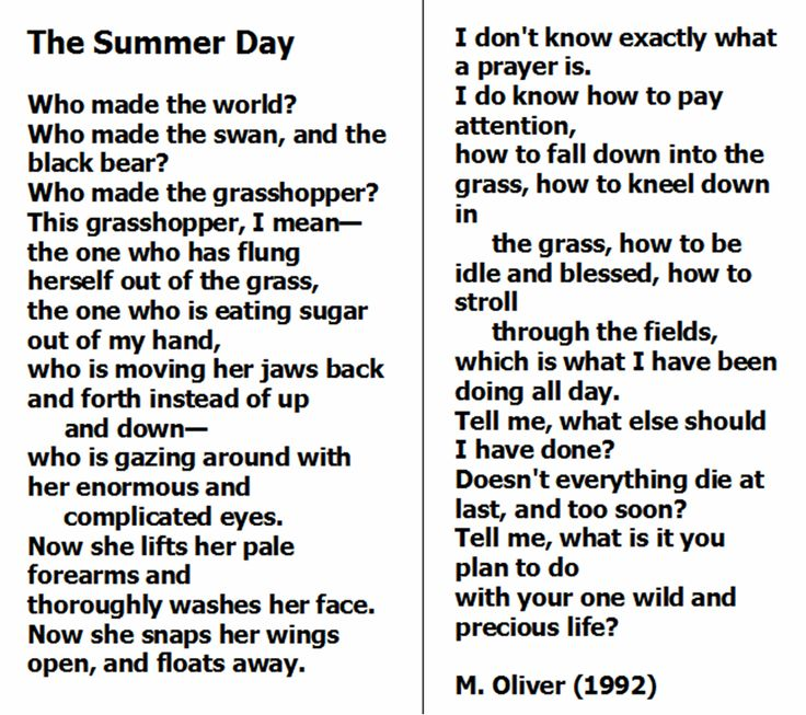 the summer day mary oliver In her poetry, oliver reveals her ability to pay attention to life in a deep way i don 't know exactly what a prayer is, she writes in the summer day i do know.