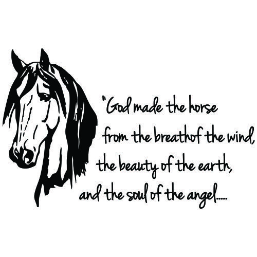 Horses are made by the essentials things of life!