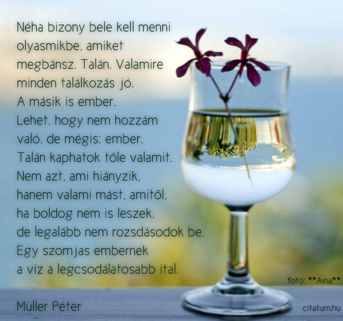 A hét idézete július első hetében Müller Péter Heti útravaló c. rovatából.
