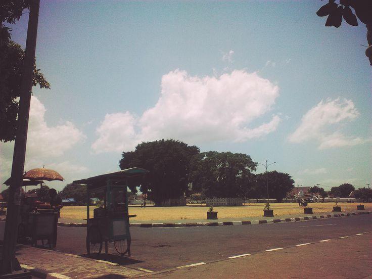 Alun-alun Kidul (Kidul main square),Yogyakarta ,There were two twin Banyan tree