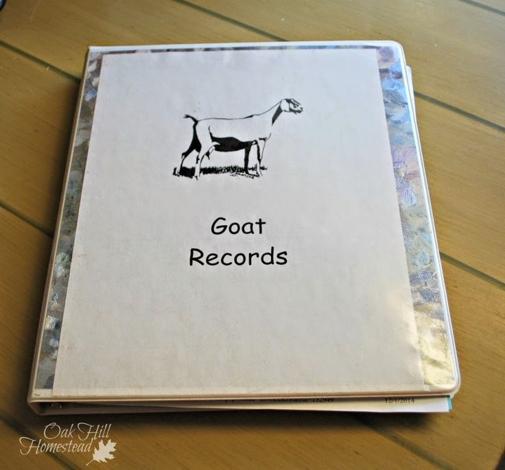 Oak Hill Homestead: Recordkeeping on the Homestead, Part One... I use these.