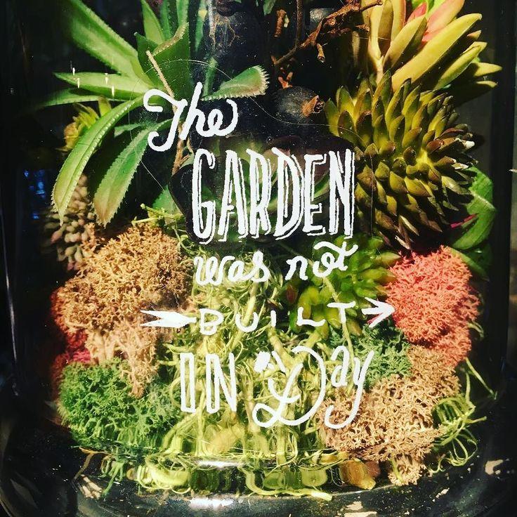 Sanna ord #Trädgård #Garden #Blommor #Flowers #Frö #Växter #Minträdgård #Mygarden #Hemodlat #Wexthuset