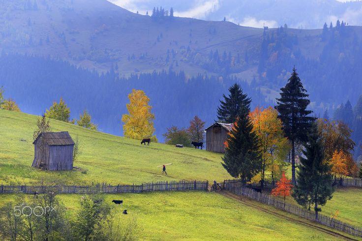 Bucovina by Sveduneac Dorin Lucian on 500px