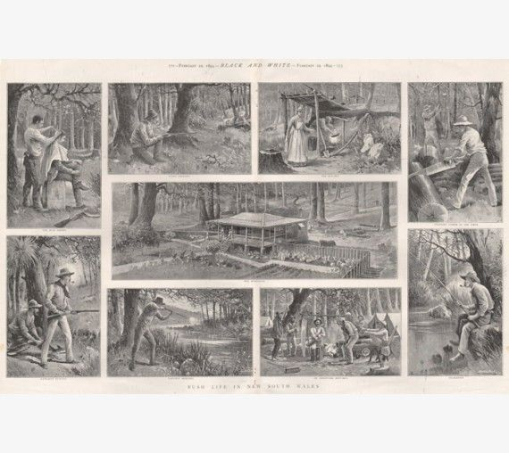 Bush Life New South Wales. Images titled - 'The Bush Barber', 'Dingo Shooting', 'The Kitchen', 'Splitting Timber in the Scrub', 'Our Homestead', 'Kangaroo Hunting', 'Platypus Shooting', 'An Improvised Boot-Jack', and 'Relaxation'. From 'Black and White', an English illustrated periodical.   Photogravure 1894