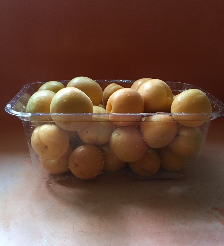 Apricots from my tree.