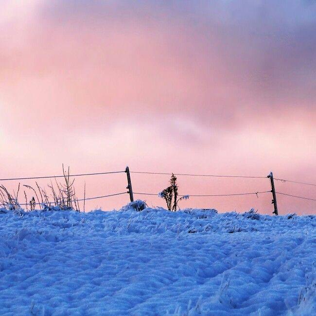 Frosen morning. ©Ann-Jorunn Jentine Aune