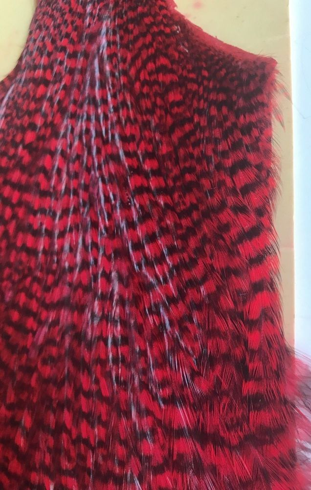 Red GrizzlyDry Fly Hackle / Fly Tying Feathers, fly tying supplies, feathers #Metz