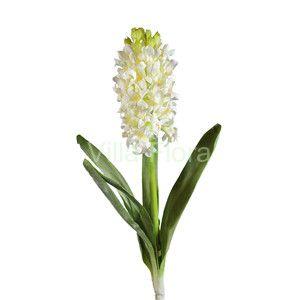 Hiacynt 41 cm, biały