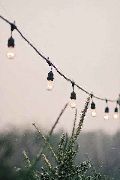 outdoor string lights.                                                                                                                                                                                 More