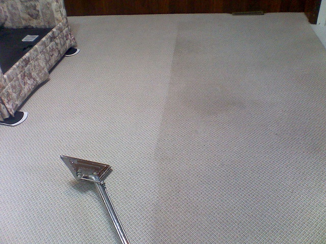Capture+Carpet+Cleaner+Home+Depot