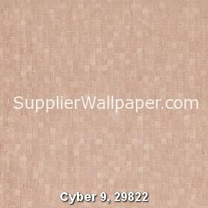 Cyber 9, 29822