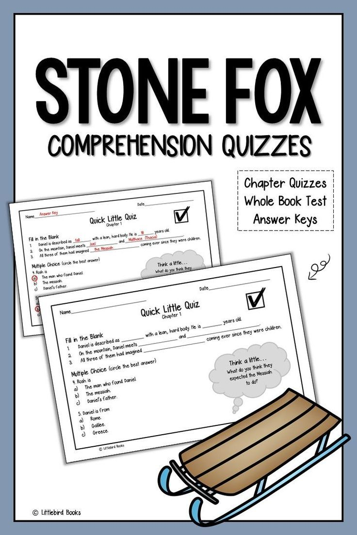 Stone Fox Comprehension Questions | Novel Studies