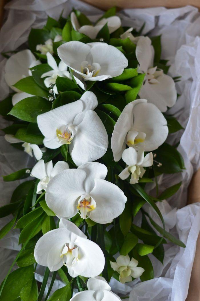 bouquet de mariée en cascade d'orchidées blanches et verdure