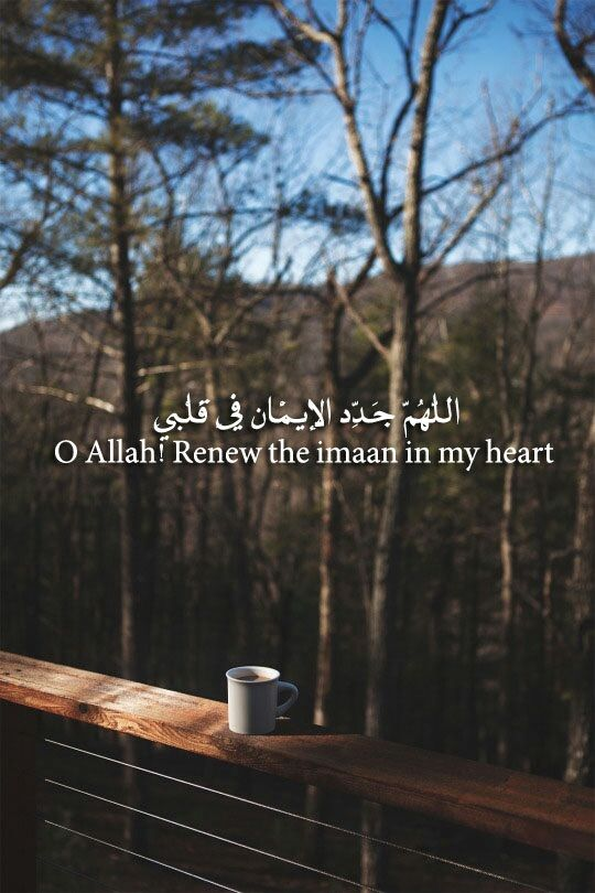 Oh Allah, renew the iman in my heart. ❤