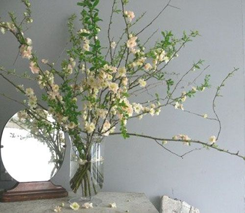 Large flower modern arrangements branches decorating for Floral arrangements with branches