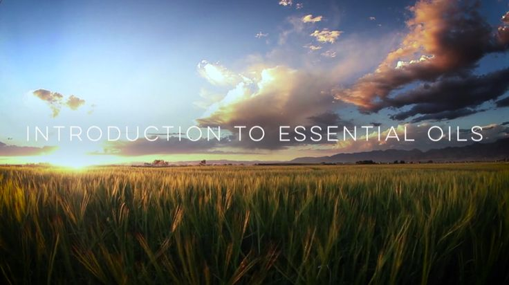 Video: Introduction to Essential Oils