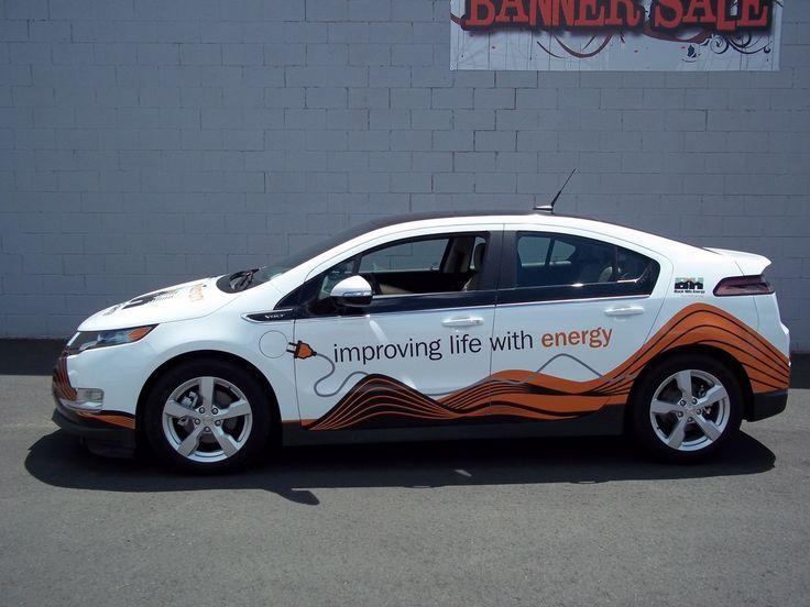 Best Venus Pest Company Graphics Ideas Images On Pinterest - Auto graphics for car