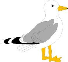 25 best gulls images on pinterest finding nemo seagulls cartoon rh pinterest com cartoon seagulls flying cartoon seagull pictures