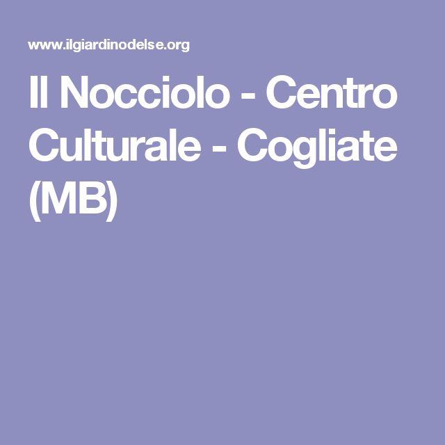 Il Nocciolo - Centro Culturale - Cogliate (MB)