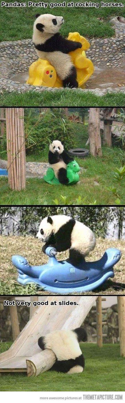 Pandas: Pretty good at rocking horses but....