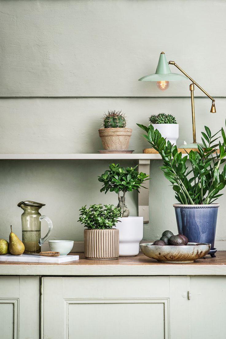5 Minutes with Joanna Lavén, an Interior Stylist | Rue