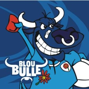 Supporter of the:       Rugby ~ Blou Bulle / Blue Bulls