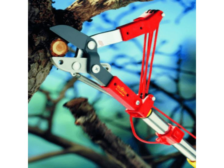 The BEST TREE LOPPER ever. Dear RCM Tree Lopper, You're still the one for us. Love, Gardeners & Tree Trimmers of the world. http://www.bluestonegarden.com/wolf-garten-tree-lopper.html