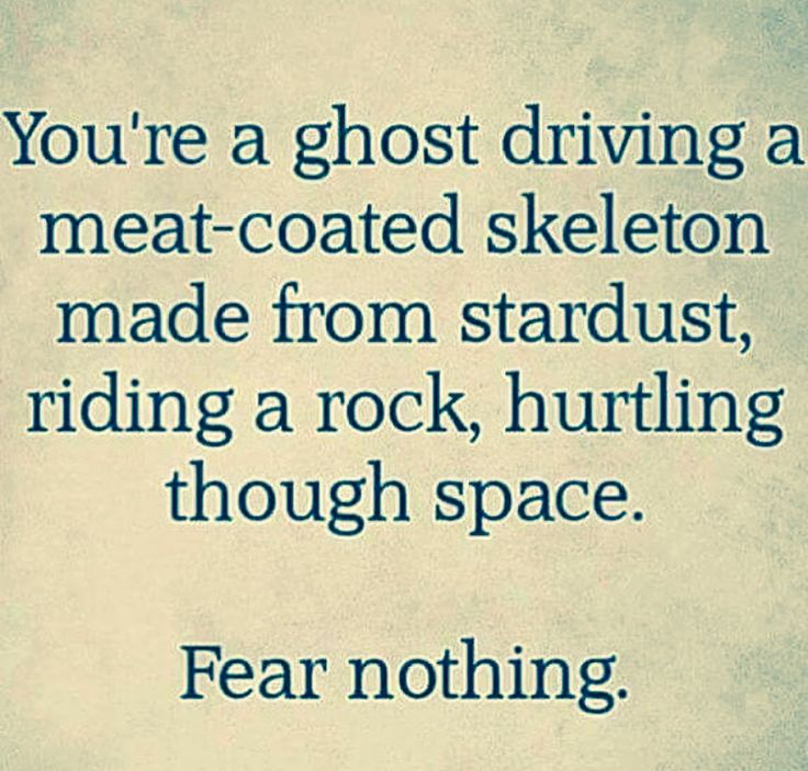 Youre A Ghost Driving Meat Coated Skeleton Made From Stardust Riding Rock Hurtling Through Space Fear Nothing But Maybe Spelling Errors