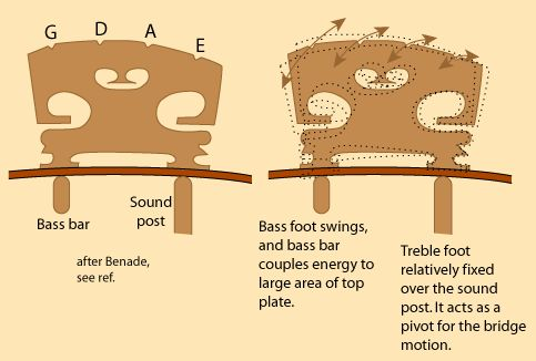 Violin Bridge function