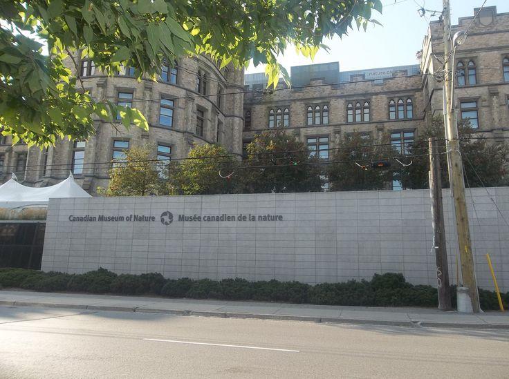 Canadian Museum of Nature-Centretown Hotspot. http://nexthome.yp.ca/neighbourhoods/ottawa-centretown/31177/