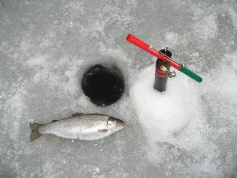 69 best ice fishing images on pinterest fishing stuff for Best ice fishing line