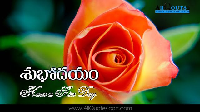 Telugu Good Morning Quotes Wshes For Whatsapp Life Facebook Images Inspirational Thoughts Beautiful Flowers Images Good Morning Beautiful Flowers Flower Images