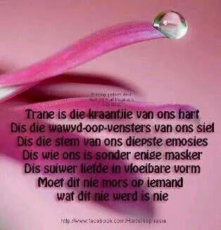 Trane is die kraantjie van ons hart...