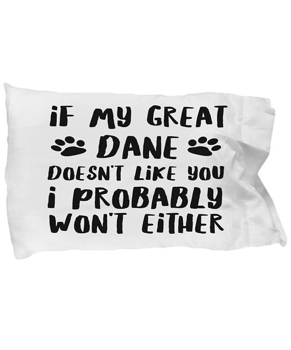 Best 25 Great Dane Bed Ideas On Pinterest Wood Dog Bed