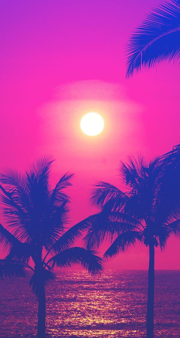 Pink pineapple trees