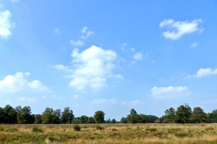 Prachtige dag in het mooie #Westerwolde !