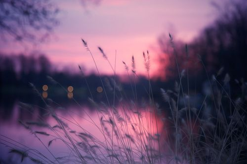 Purple Purple Purple: Shades, Bookends, Natural Beautiful, Purple Sunsets, Colors Photography, Inspiration Photography, Posts, Lakes, Colors Schemes