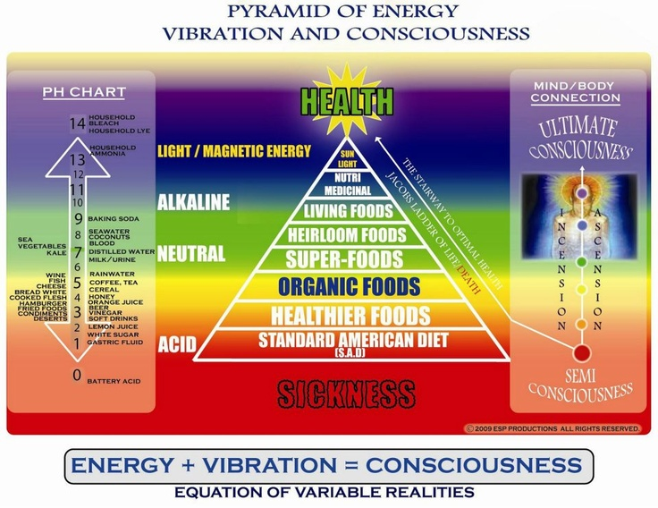High Vibrational Frequency Foods