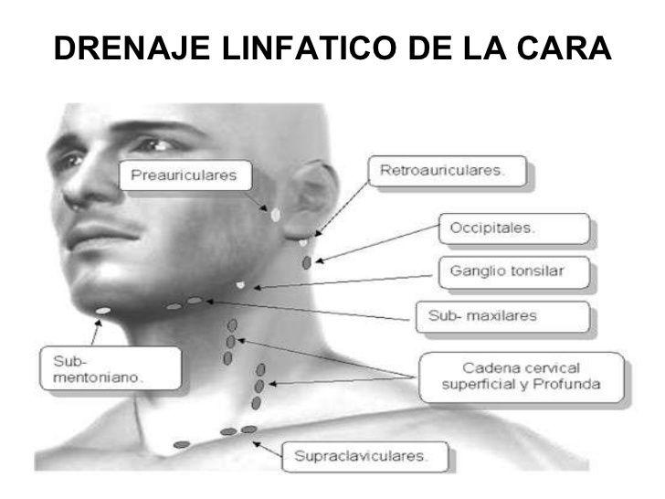 Drenaje Linfatico Facial