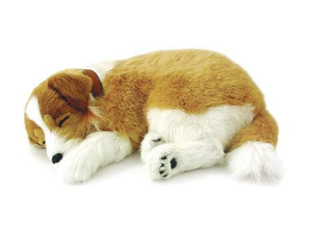 Collie Sleeping Plush Toy